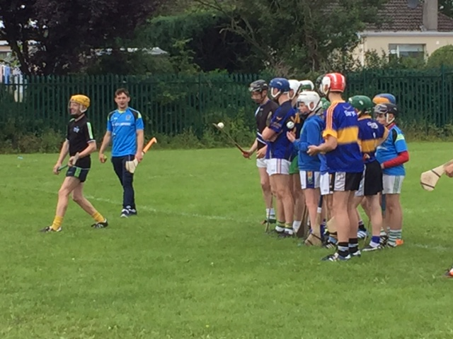 """Niall O Meara putting the participants through their paces at """" Total Hurling Workshop"""" at Nenagh College"""